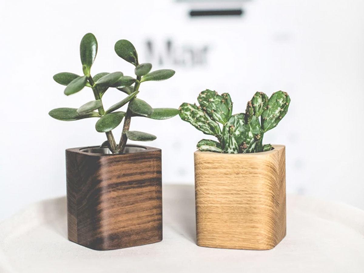 Oakywood Square Planter Oak - Bureau Vetplant Potje