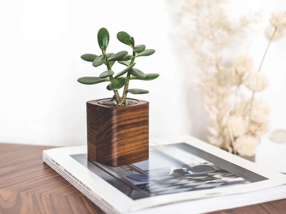 Oakywood Square Planter Walnut - Bureau Vetplant Potje